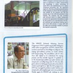 newsin3